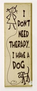 your dog is your therapy - SF Dog Connect
